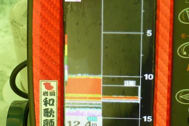 P1050507.jpg