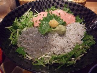enoshima-shirasu