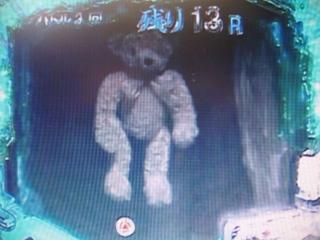 森のホラー熊3