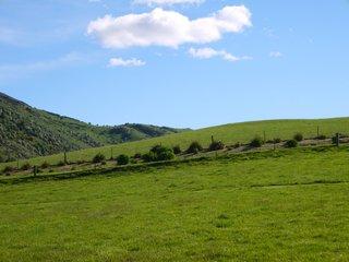 Farm land -1
