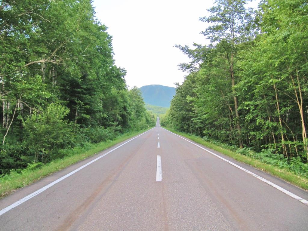鹿追の直線道路 (2)