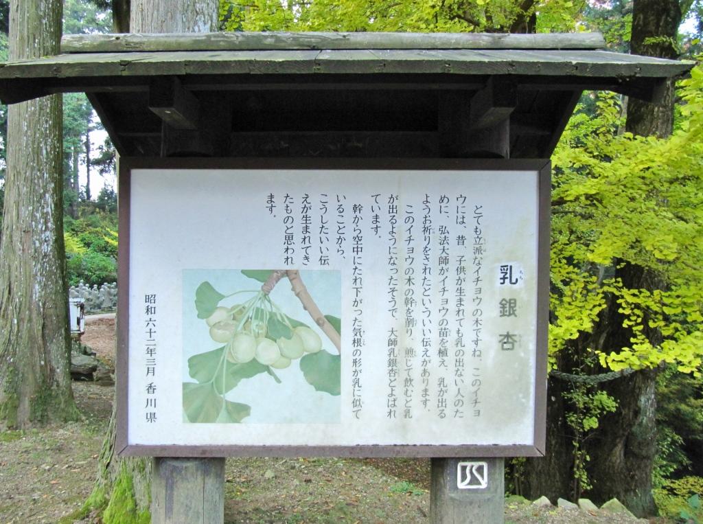 雲辺寺 (11)