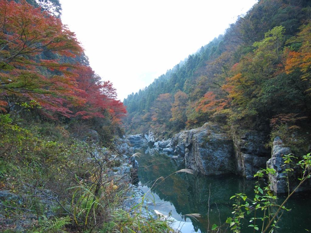祖谷渓 (7)