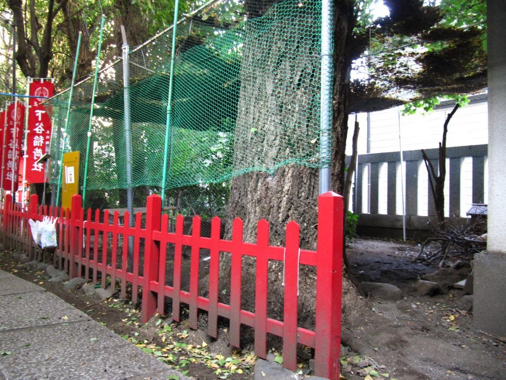 下谷神社 (17)
