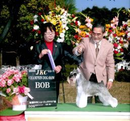 福岡マーク2010