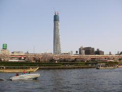 2010040301.jpg