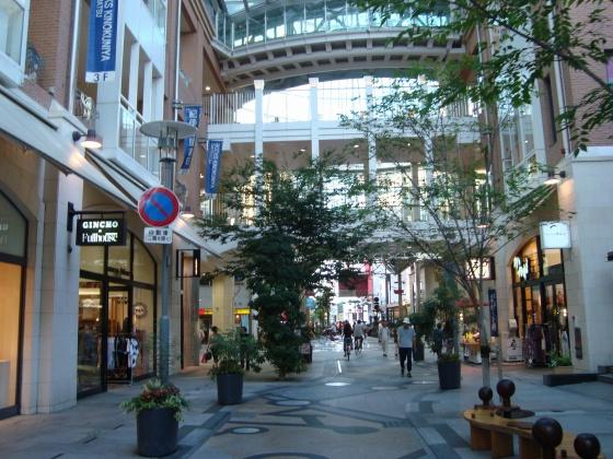 kagawa2011 032