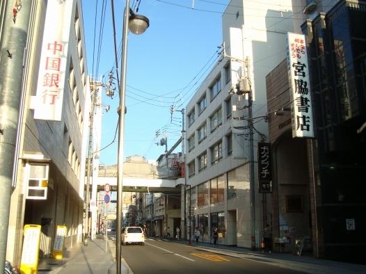 kagawa2011 029