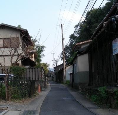 大乗寺フヨウ 091