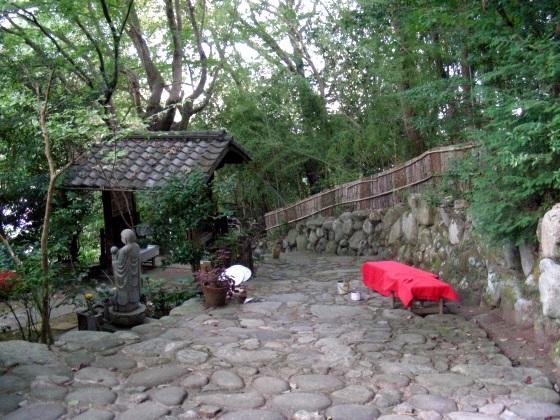 大乗寺フヨウ 057