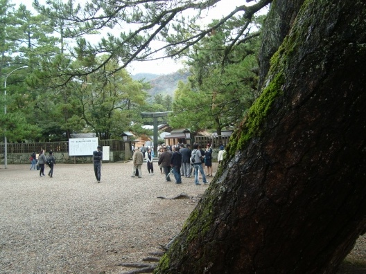山陰2011 073
