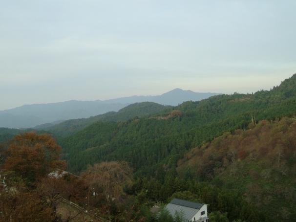吉野赤 034 (2)