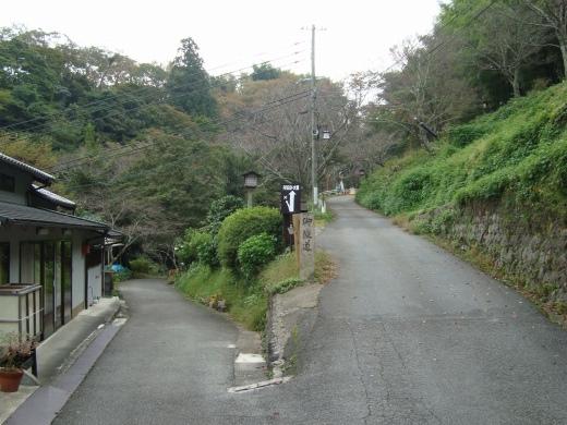 吉野赤 074