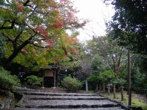 嵐山紅葉2011 037