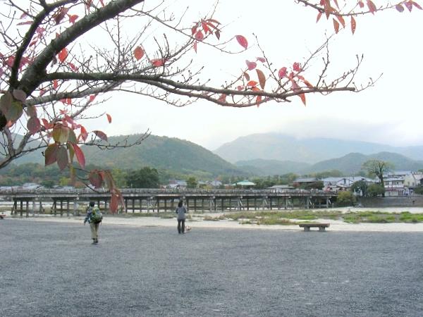 嵐山紅葉2011 016