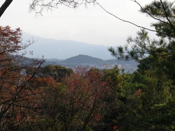 嵐山紅葉2011 070