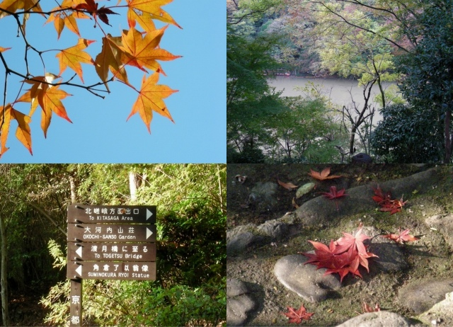 嵐山紅葉2
