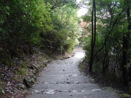 嵐山紅葉2011 049