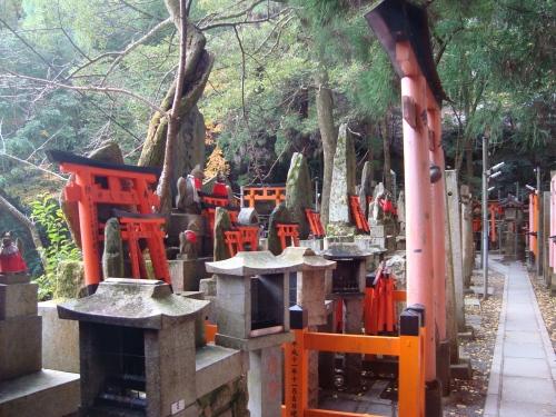 稲荷醍醐紅葉赤 051