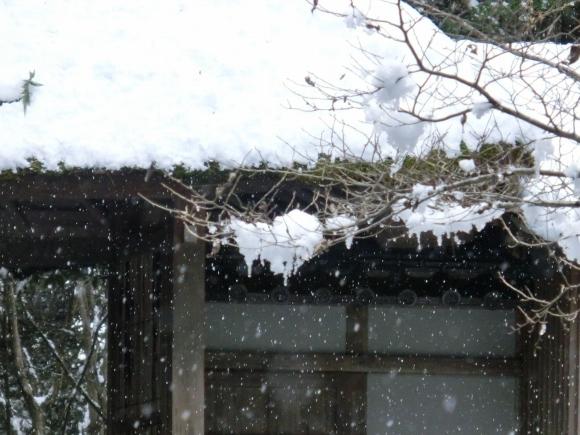 雪銀閣寺浄土寺 192