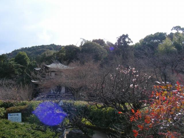 勧修寺小野 033 - コピー
