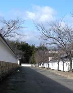 勧修寺小野 011