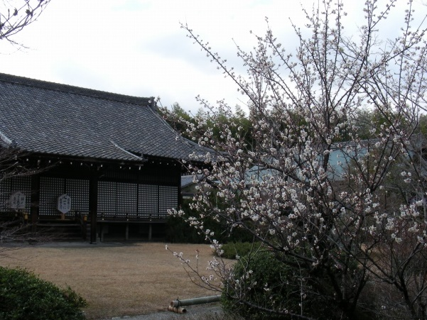 勧修寺小野 059