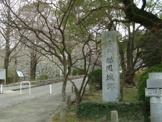 福岡赤 081