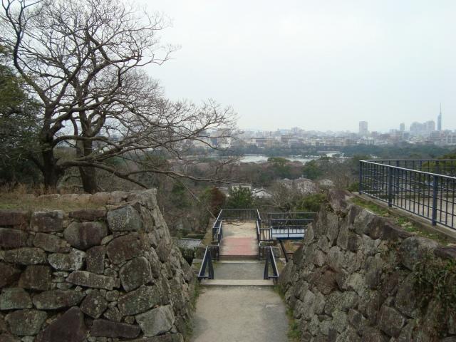 福岡赤 050