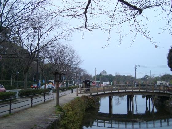 福岡赤 028