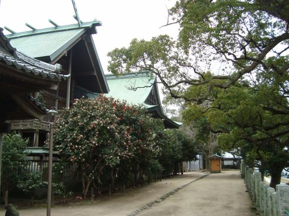 福岡赤 158 - コピー
