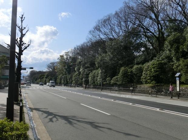 御所桃2012 127 - コピー