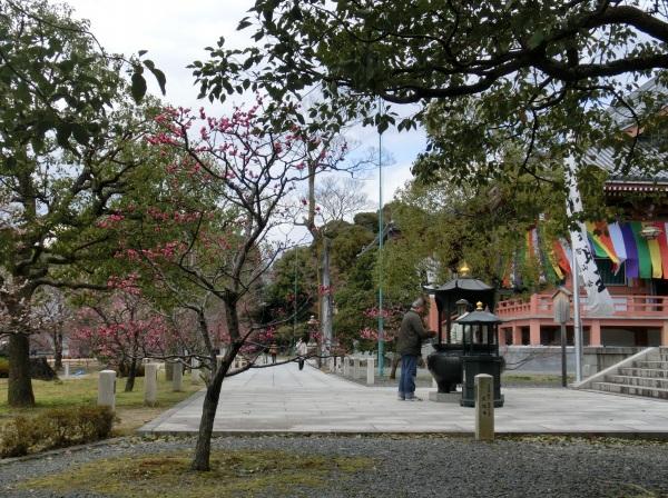 ゆり大学入学式 032 - コピー