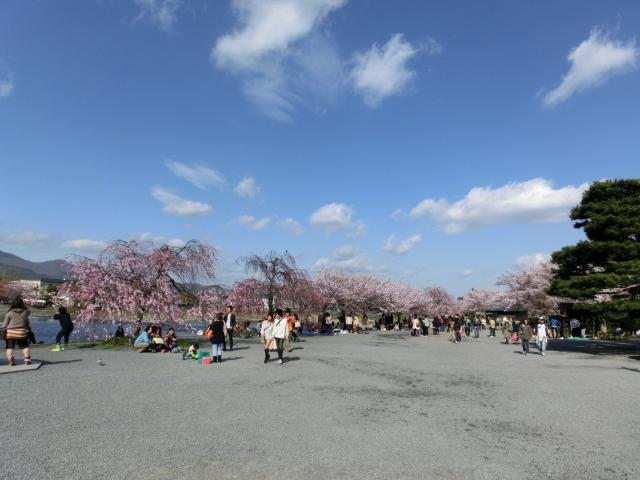 桜嵐山嵐電2012 185 - コピー