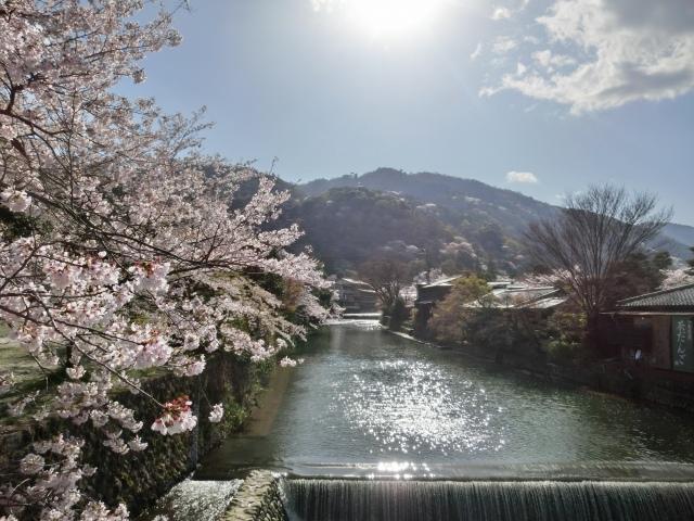 桜嵐山嵐電2012 192 - コピー