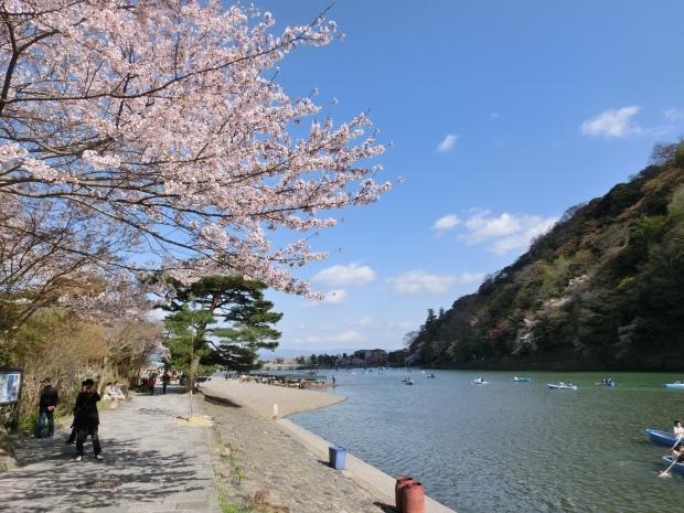 桜嵐山嵐電2012 166 - コピー