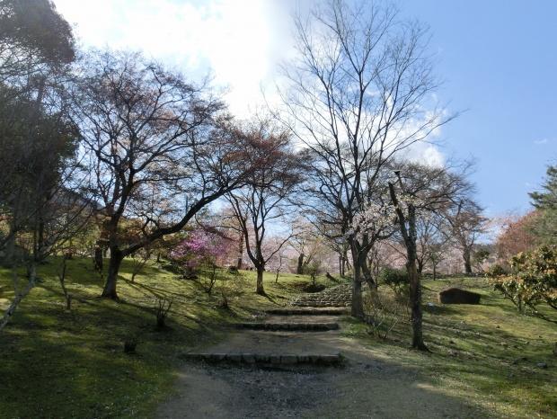 桜嵐山嵐電2012 157 - コピー