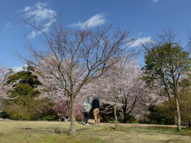 桜嵐山嵐電2012 138 - コピー