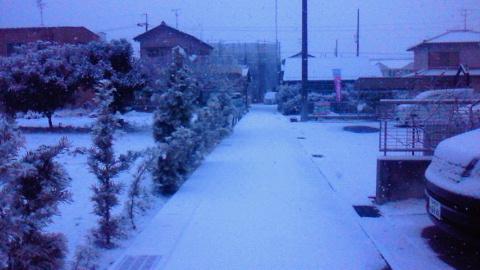 10001_20101231134659.jpg