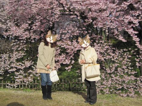 4月13日高遠桜ジェルファミリー2