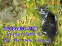 10/10/15iceさんからお祝い
