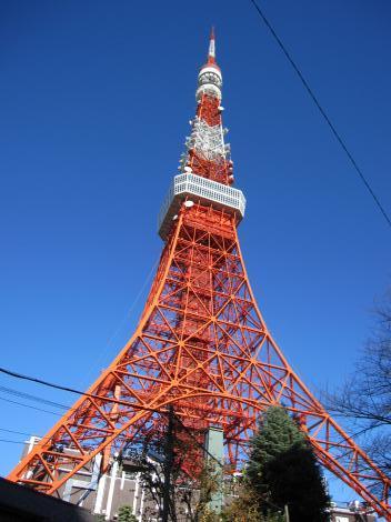 10/12/8東京タワー2