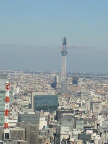 10/12/8東京タワー4