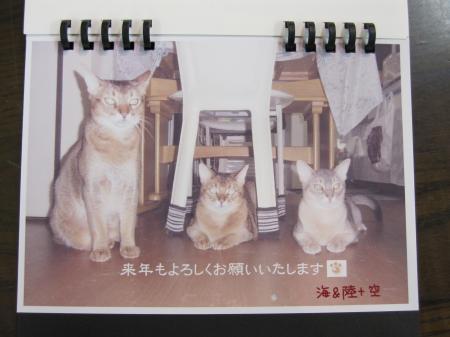 10/12/14X'masプレゼント4