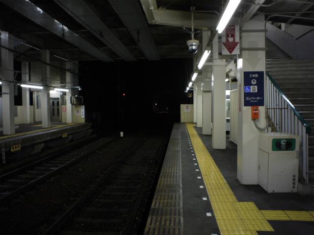 P1030820.jpg