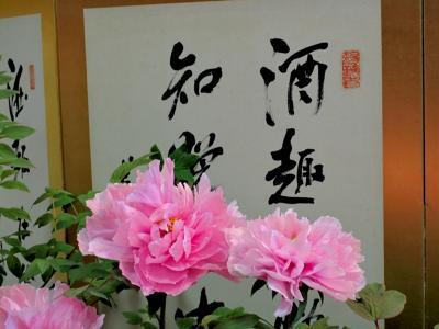 聞称寺ボタン (3)