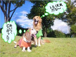 20121009kaiou2.jpg