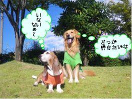 20121009kaiou3.jpg