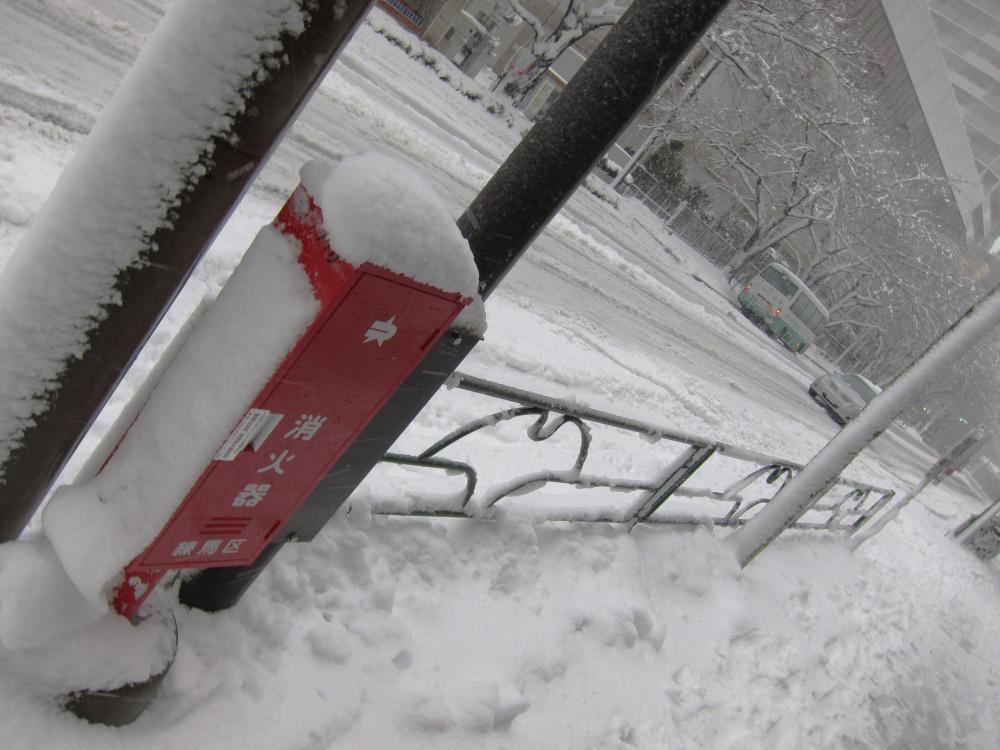 snowtokyo