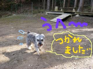 snap_jirokkosan_201020172229.jpg